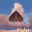 Chairlift - Moth album artwork