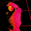 Аватар для NyqrchN9603