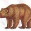 Аватар для teddy_mod