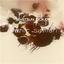 Silversun Pickups - Panic Switch album artwork