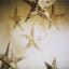 Аватар для podruga_vetra