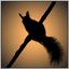 Аватар для zushiki