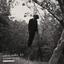 Adrian Younge - The American Negro album artwork
