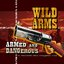 Wild Arms: ARMed and DANGerous