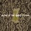 Rupa & The April Fishes - Build album artwork