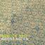 Veruca Salt - Ghost Notes album artwork