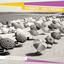 Summer Girlfriends - Shockwaves album artwork