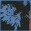 Hovvdy - Covers 2 album artwork