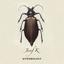 Josef K - Entomology album artwork
