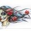 Аватар для Nyzka
