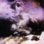 Ministry - The Land of Rape and Honey album artwork
