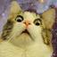 Аватар для Mo-Jo_Pear