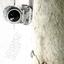 LCD Soundsystem - Sound Of Silver album artwork