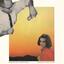 Radiator Hospital - Something Wild album artwork