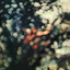 Pink Floyd - Obscured By Clouds album artwork