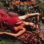 Roxy Music - Stranded album artwork