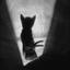 Аватар для Cafe_noir