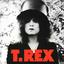 T. Rex - The Slider album artwork
