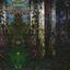 Entlang - The Four Sisters album artwork