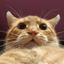 Аватар для eXhostosis