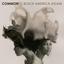 Common - Black America Again album artwork