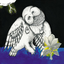 Songs: Ohia - The Magnolia Electric Co. album artwork