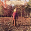 Allman Brothers Band - Brothers and Sisters album artwork