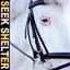 Iceage - Seek Shelter album artwork