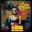Llama In My Living Room - mp3 альбом слушать или скачать