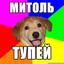 Аватар для FreddyGump