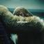 Beyonce - Lemonade album artwork