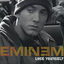 Lose Yourself - mp3 альбом слушать или скачать