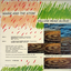 Marie And The Atom - Yellow Read Aloud album artwork