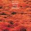Kenny Wheeler - Gnu High album artwork