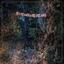 Eyelids - The Accidental Falls album artwork