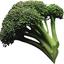 Avatar de brocco_lee