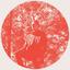 Owen Pallett - Heartland album artwork