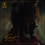 Thundercat - It Is What It Is album artwork