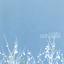 The Shins - Oh, Inverted World album artwork
