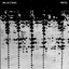 Wailin Storms - Rattle album artwork
