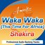 Waka Waka (This Time For Africa) – Karaoke Version