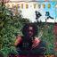 Peter Tosh - Legalize It album artwork