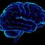 Аватар для Lina_Brain