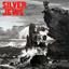 Silver Jews - Lookout Mountain, Lookout Sea album artwork