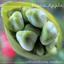 Fiona Apple - Extraordinary Machine album artwork