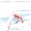 """Matt Sweeney & Bonnie """"Prince"""" Billy - Superwolf album artwork"""