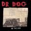 Dr. Dog - Be the Void album artwork