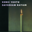 Sonic Youth - Daydream Nation album artwork