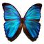 Аватар для melancholicmark