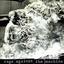 Rage Against the Machine - Rage Against The Machine album artwork